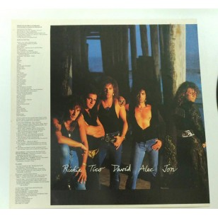 Bon Jovi - New Jersey 1988 Hong Kong Version Vinyl LP  (Rare Vertigo Swirl Release)***READY TO SHIP from Hong Kong***