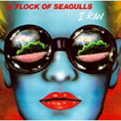 A Flock Of Seagulls (9)
